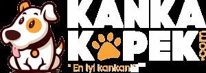 Kanka Köpek - Satılık Köpekler & Yavrular